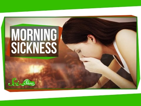 What Causes Morning Sickness?