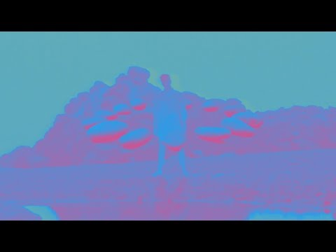 Young the Giant: Superposition [OFFICIAL VIDEO]