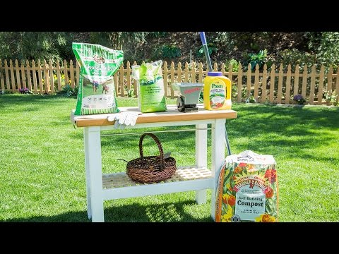 Home & Family 2119 - Tips on Prepping your Lawn this Spring