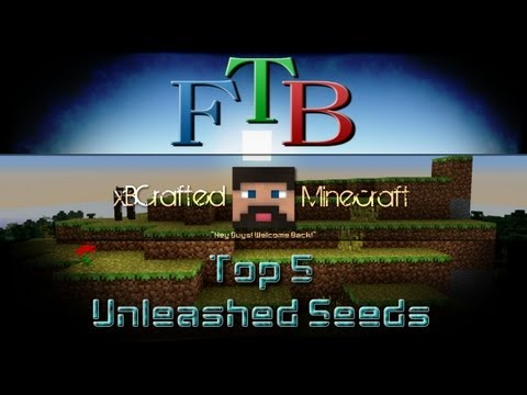 Feed the Beast Unleashed - Top 5 Seeds