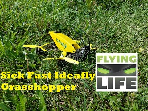 Sick Fast! Ideafly Grasshopper F210 (GEARBEST.COM)