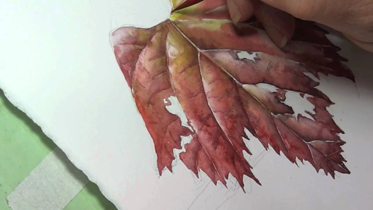Leaves Painting Painting Grape Leaves Tip 14
