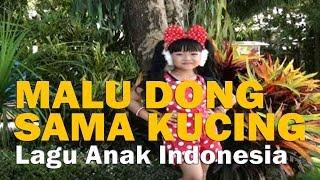 download lagu Malu Dong Sama Kucing - Lagu Anak Indonesia 🔥 gratis