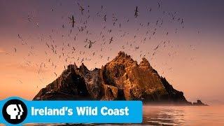 IRELAND'S WILD COAST | Official Trailer | PBS