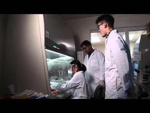 Hydrogels deliver on blood-vessel growth