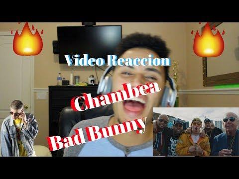 Chambea - Bad Bunny | Video Oficial (VideoReaccion)