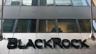 A Day in the Life of a BlackRock Analyst