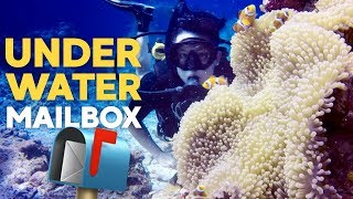 World's Deepest Underwater Mailbox! Taiwan Green Island Adventure!!