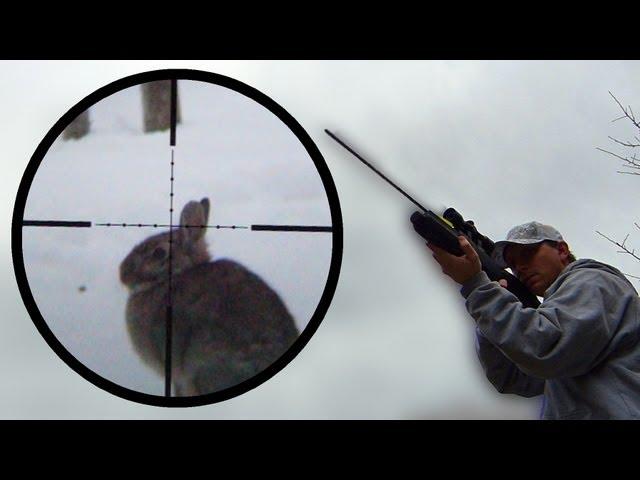 Arrow Gun Rabbit Hunt with FX Verminator and G5 Small Game Head (SGH)
