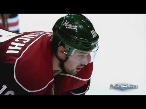 NHL Best of 2013 Season