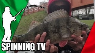 STREETFISHING Light Game - Spinning TV.it