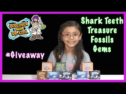 Shark Tooth, Fossils, Bugs, Gemstones, Treasures and more Mini Dig Kits by Discover with Dr.Cool