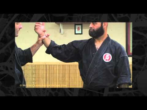 Kyusho Points - Bujinkan - Ninja Training Video Blog Image 1