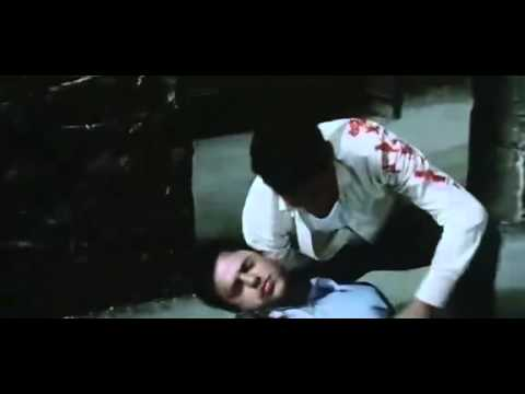 Hisss 2010   Hindi Movie  Hq   Part 12 video