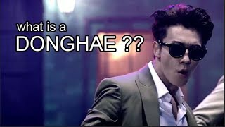 What is a DONGHAE?? (Super Junior crack?)