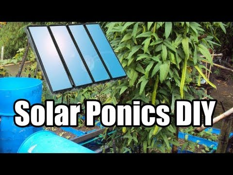 Solar Powered Aquaponics