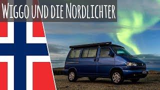 Wiggo erkundet das Nordkap & die Nordlichter   Mit dem Bulli ans Nordkap 05