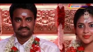 vijay amala paul divorce ?