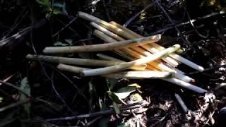 ล่าสัตว์ป่า Yos Hav Zoov Tuas Ploos Roob Dub Sab Teb Chaw Moos Pheeb 2018 ( Hunting )