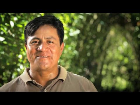 Chiapas nos une su grandeza - HD
