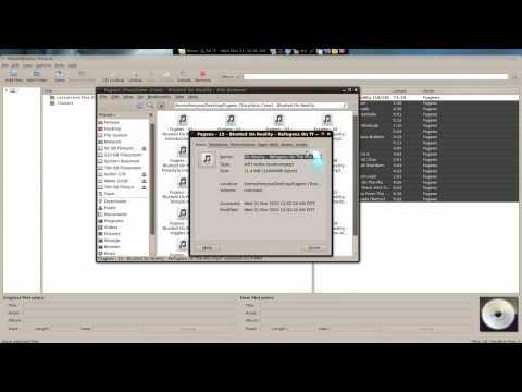 MusicBrainz Picard - Auto ID3 Tag Rename & Cover Art - Linux Mint 8