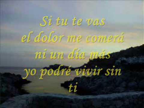 Enrique Iglesias - Enrique Iglesias ~ Si tu te vas lyrics