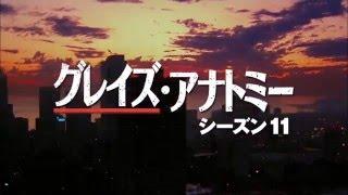 グレイズ・アナトミー シーズン10 第22話