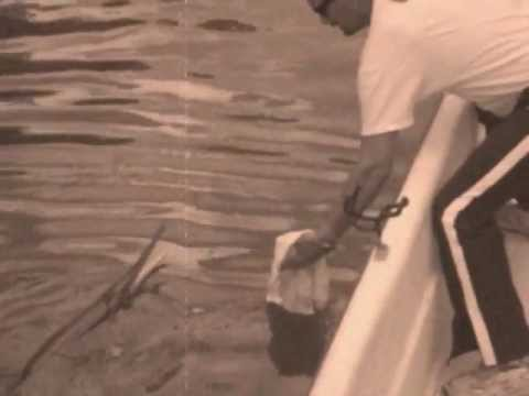 Lake-Allatoona-Gar-Fishing.wmv