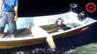 Aktiviti Memukat Ikan