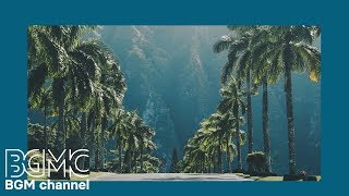 Relaxing Tropical Beach Cafe Music - Hawaiian Music: Island Paradise