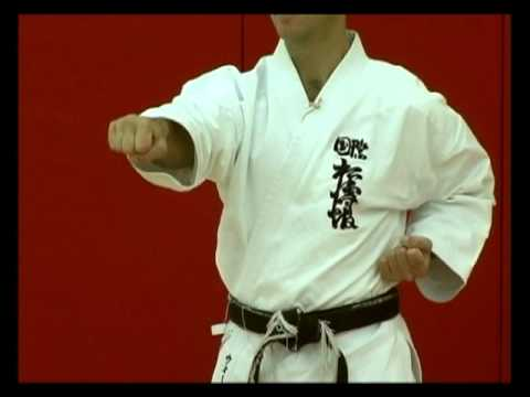 Basic Karate Punches: Chokuzuki - Straight punch