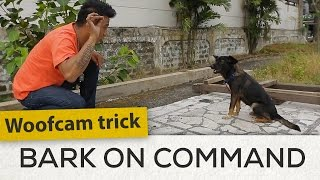 Woofcam Trick: Bark on Command | Woofcam