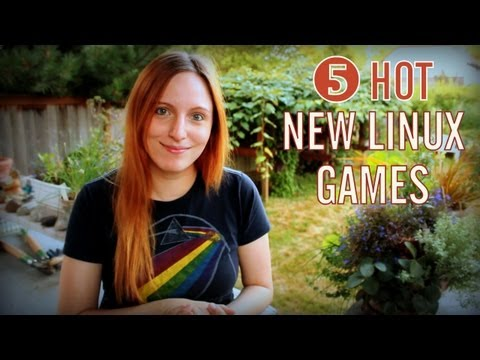 Top 5 Linux Games of 2013