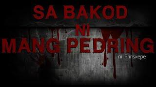 Tagalog Horror Stories: SA BAKOD NI MANG PEDRING