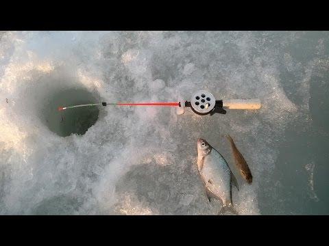 подводная камера для рыбалки щука