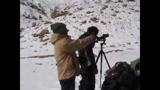 The Making Of Snow Leopard Documentary