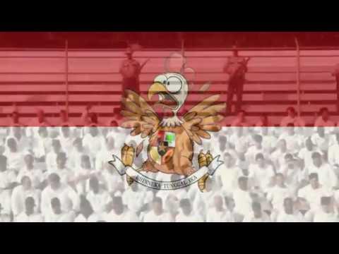 yel yel tni cheerleaders thumbnail