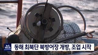 동해 최북단 북방어장 개방, 조업 시작