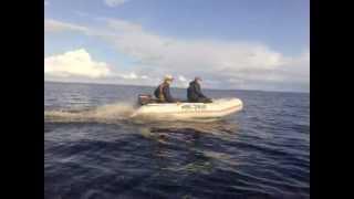 лодка 360 и мотор тохатсу 9.8