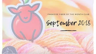 Back to School!: Paradise Fiber of The Month Club Unboxing