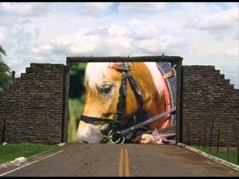 *Tažní koně-Robert Křesťan-Poutníci*