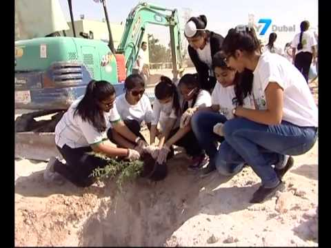 City7 TV - 7 National News - 2 May 2015 - UAE News