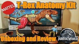 Mattel Jurassic World Tyrannosaurus Rex Anatomy Kit