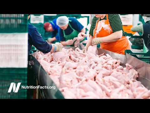 Poultry Exposure Tied to Liver and Pancreatic Cancer