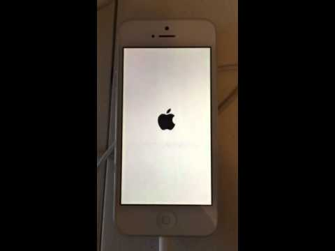 Death Screen Iphone Iphone 5 White Screen of Death