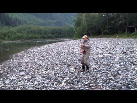 Gaula Salmon 2013 - Rune Jensen Salmon 9,5 kg - Norwegian Flyfishers Club
