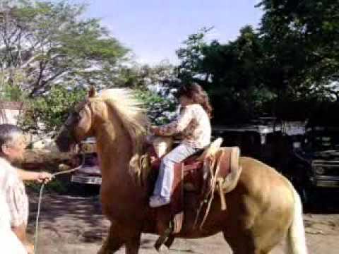 caballos salvajes 2