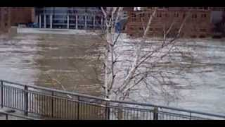 video in Grand Rapid there is a flood... well kind of.
