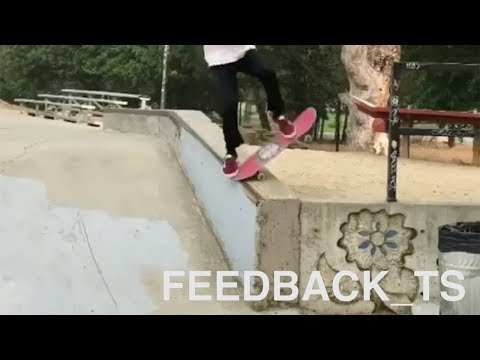 Feedback_TS | Ted Can Finally Skate Again