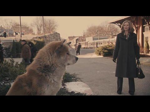 【宇哥】狗狗每天去車站接送主人,主人去世後竟堅守車站9年直至死亡《忠犬八公的故事》